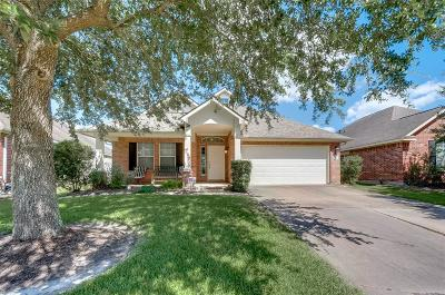 Fort Bend County Single Family Home For Sale: 2810 Sage Bluff Avenue