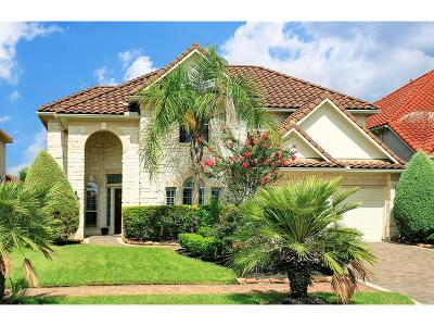 Houston Single Family Home For Sale: 1134 Villa Bergamo Court
