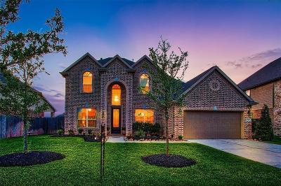 Tomball Single Family Home For Sale: 13310 Cameron Reach Drive