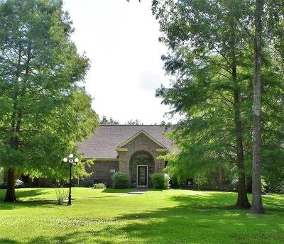 Dickinson Single Family Home For Sale: 12403 Pine Oak Drive