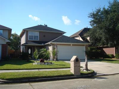 Channelview Single Family Home For Sale: 15236 Tayport Lane