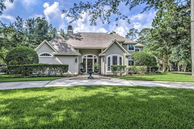 Houston Single Family Home For Sale: 2035 Players Path