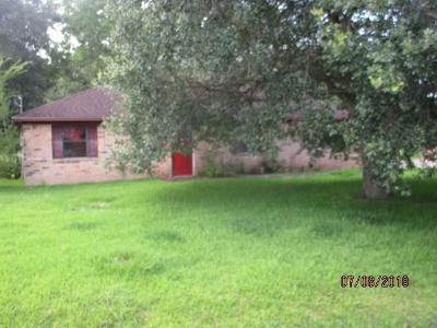 Brazoria Single Family Home For Sale: 1127 County Road 481