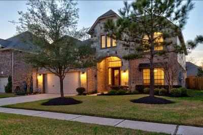 Rosenberg Single Family Home For Sale: 610 Streamwood Lane