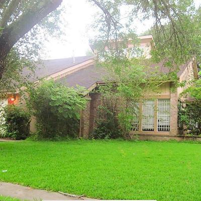 Galveston County, Harris County Single Family Home For Sale: 12931 Knotty Glen Lane