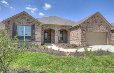 The Woodlands Single Family Home For Sale: 224 Friesian Lane