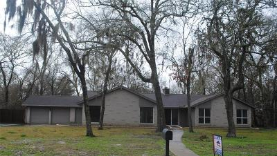 Friendswood Single Family Home For Sale: 413 S Falling Leaf Drive E