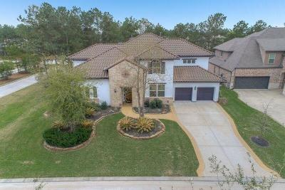 The Woodlands Single Family Home For Sale: 66 S Shasta Bend Circle