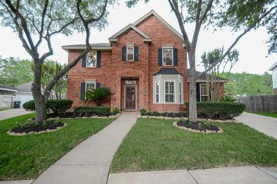Sugar Land Single Family Home For Sale: 102 Huggins Ferry
