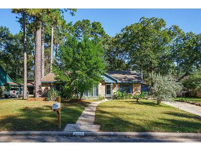 Houston Single Family Home For Sale: 2207 Vista Manor Drive