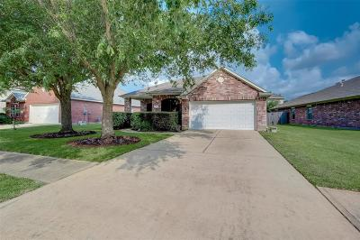 Houston Single Family Home For Sale: 4819 Plum Forest Road