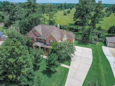 Tomball Single Family Home For Sale: 29307 Imperial Creek Drive