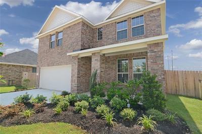 Rosenberg Single Family Home For Sale: 226 W Goose Barnacle Lane Lane