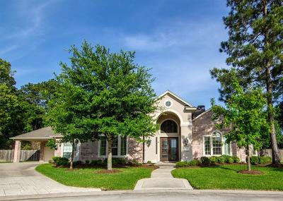 Porter Single Family Home For Sale: 21301 Odell Springs