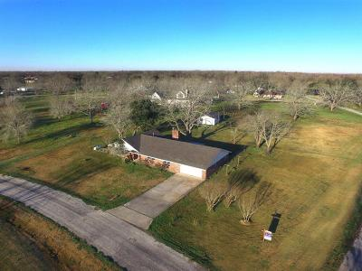 Fort Bend County Single Family Home For Sale: 405 Sagebrush Road