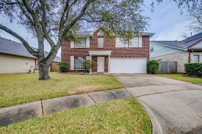 Missouri City Single Family Home For Sale: 1247 Kings Creek Trail Trail