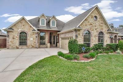 Tomball Single Family Home For Sale: 11123 Benevolent Way