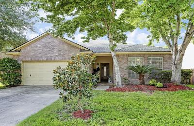 Houston Single Family Home For Sale: 14022 Somersworth Drive