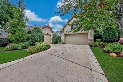 Houston Single Family Home For Sale: 3202 Colony Crest Court