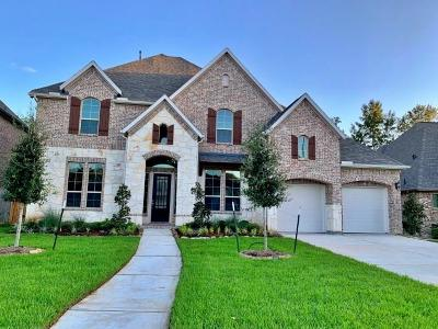 Houston Single Family Home For Sale: 5810 Vineyard Creek Lane