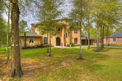 Montgomery Single Family Home For Sale: 648 S Nautica Lane S