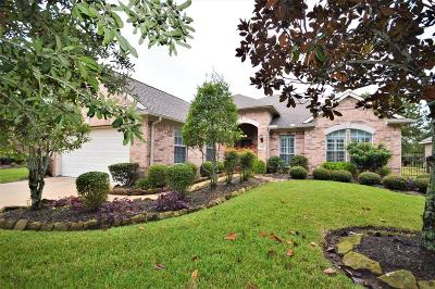 Pearland Single Family Home For Sale: 1515 N Primavera Drive