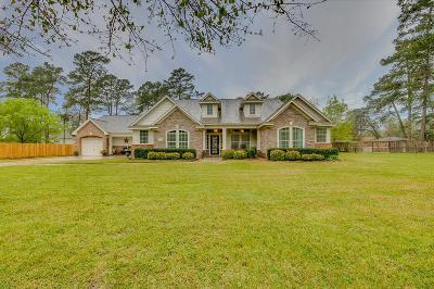 Tomball Single Family Home For Sale: 29731 Orchard Grove Drive