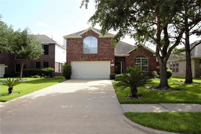 Fort Bend County Single Family Home For Sale: 4911 Sandalia Court