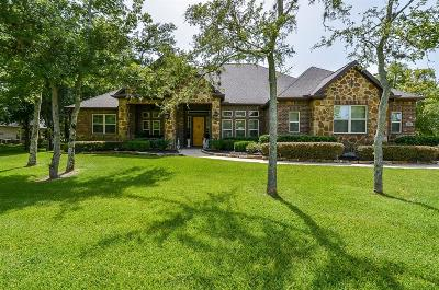 Fulshear Single Family Home For Sale: 3307 Wellspring Lake Drive