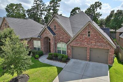 Single Family Home For Sale: 18615 Minden Oaks Drive