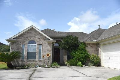 Tomball Single Family Home For Sale: 9119 Sandstone Falls