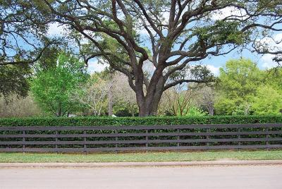 Katy Residential Lots & Land Pending: Village Green Drive