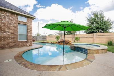 Fulshear Single Family Home For Sale: 3815 Quinn Acres Lane