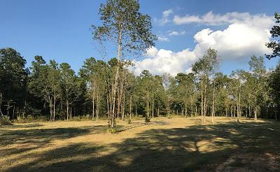 Montgomery Farm & Ranch For Sale: 12366 Hill Creek Road