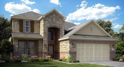 Montgomery Single Family Home For Sale: 114 Capriccio
