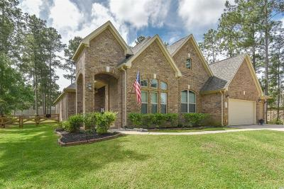 Magnolia Single Family Home For Sale: 17811 Country Grove
