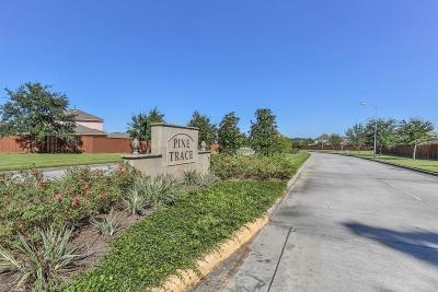 Tomball Single Family Home For Sale: 23006 Silver Linden Court