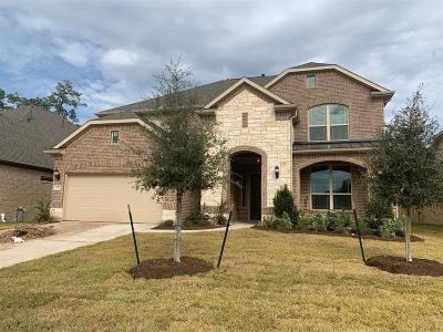 Tomball Single Family Home For Sale: 22710 Alderdale Lane