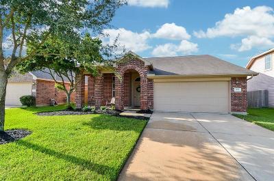 Fort Bend County Single Family Home For Sale: 1022 Grafton Garden Lane