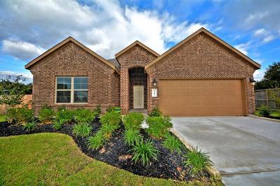Rosenberg Single Family Home For Sale: 6402 Sterling Shores Lane