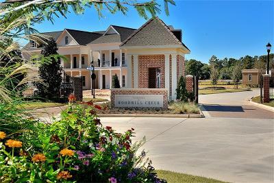 Single Family Home For Sale: 25107 Devlin Creek