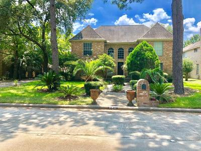 Houston Single Family Home For Sale: 15411 T C Jester Boulevard