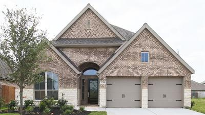 Pearland Single Family Home For Sale: 3214 Primrose Canyon Lane