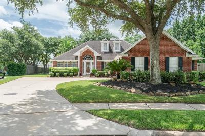 Pearland Single Family Home For Sale: 1802 Oakedge Drive