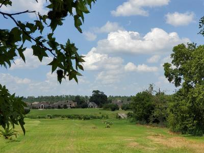 Montgomery Residential Lots & Land For Sale: 153 Grandview Boulevard