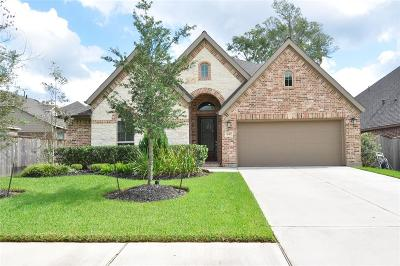 New Caney Single Family Home For Sale: 18407 Hounds Lake Drive