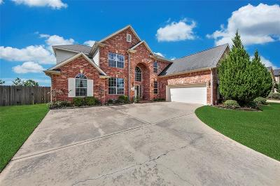 Pearland Single Family Home For Sale: 1406 Bentlake Lane