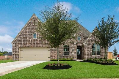 Fulshear Single Family Home For Sale: 30902 Long Branch Court