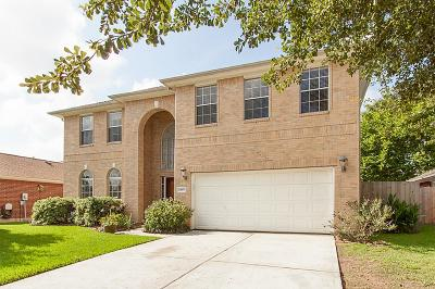Tomball Single Family Home For Sale: 13607 Country Hill Court