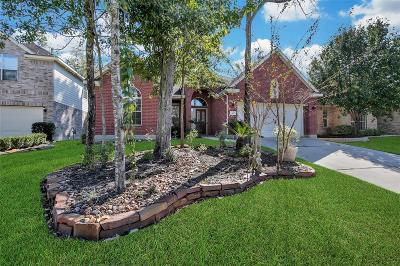 The Woodlands Single Family Home For Sale: 30 Fox Chapel Place